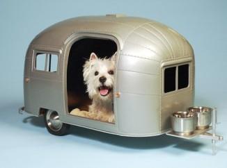 karavan-recomendaciones-para-viajar-con-mascotas-2134